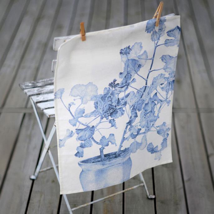 Blå pelargon
