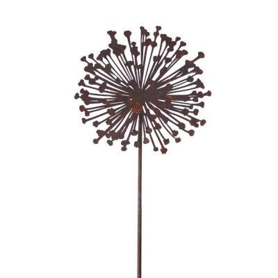 Allium frökapsel siluett
