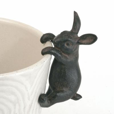 Hare på kruka