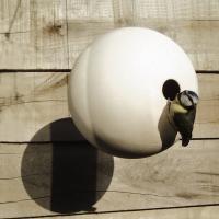 Birdball holk vit hängande