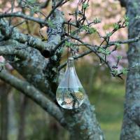 Flugskrämma glasbubbla