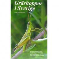 Gräshoppor i Sverige