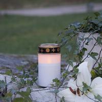Gravljus LED Serene
