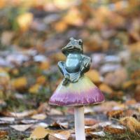 Groda på svamp