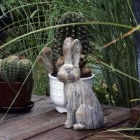 Hare i sten