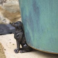 Krukfot Labrador