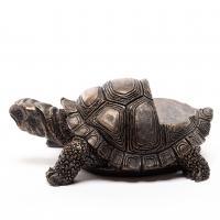 Krukfötter Potty Feet Sköldpadda
