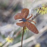 Fjäril på pinne