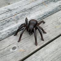 spindel i gjutjarn