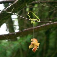 Fågelmatare tråd äpple